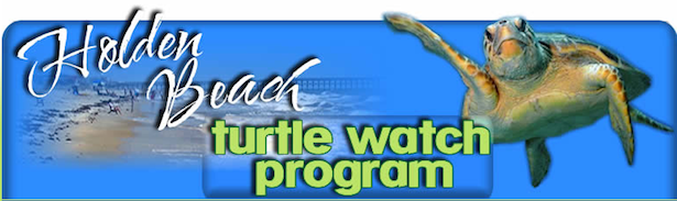 Turtle Watch Program